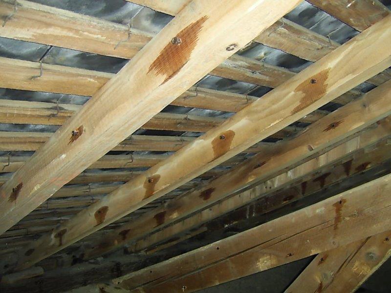 Travaux de traitement bois et charpente marseille for Carbonyle traitement du bois